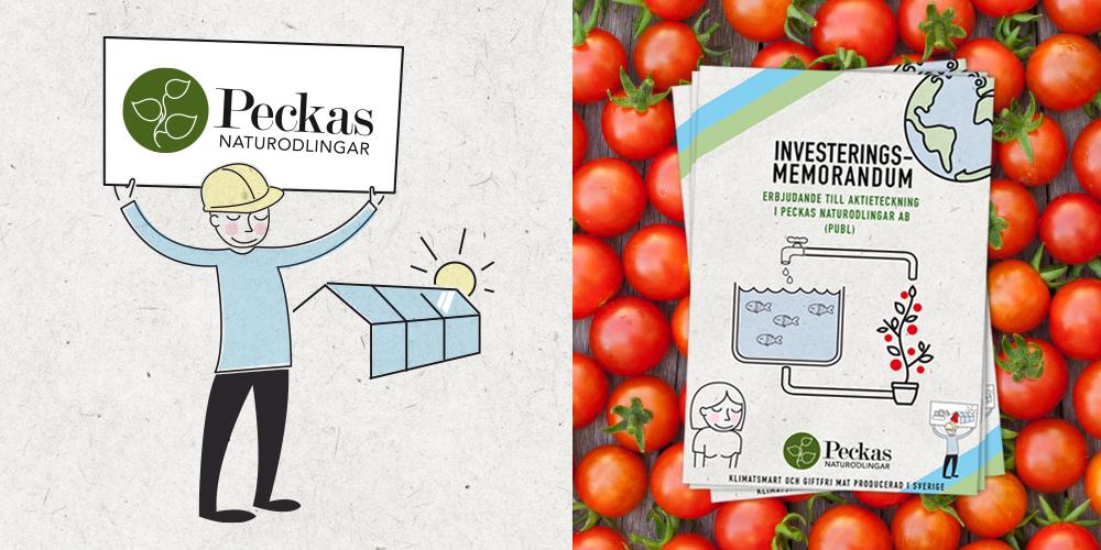 Memorandum för investerare